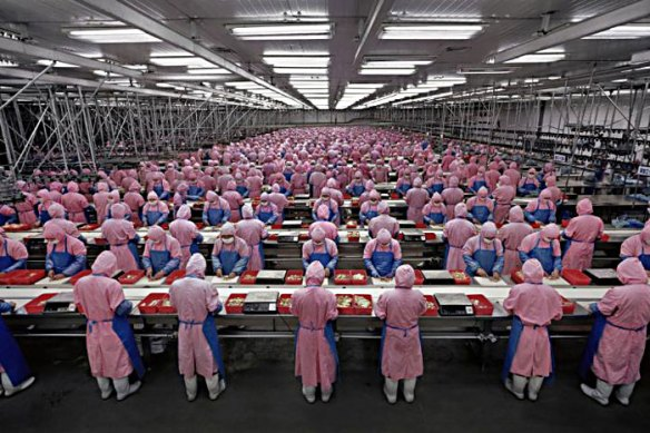 Factory workers on a production line